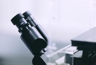 Bild från laboratorie