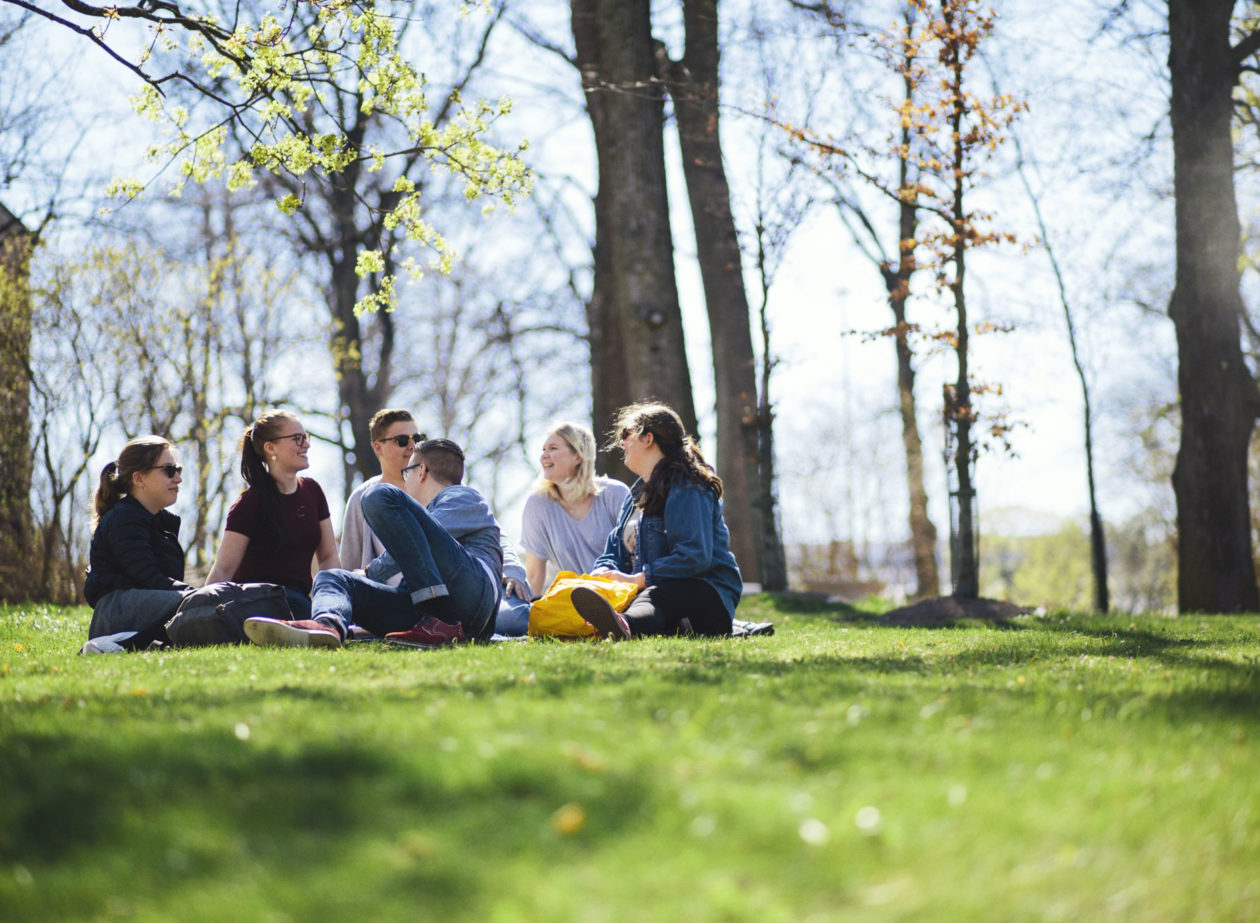 Studerande i Domkyrkoparken på sommaren.