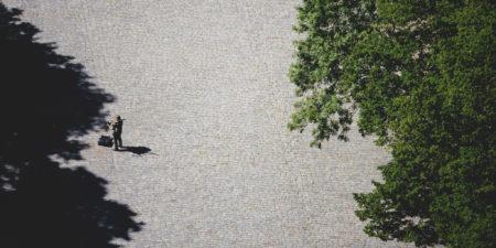 Människa och träd uppifrån