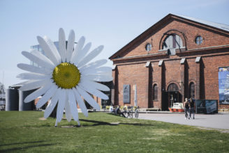 Prästkrage utanför Forum marinum.
