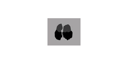 PBI's logo