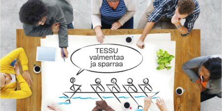 tessu project