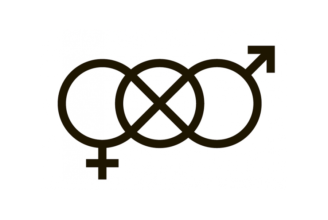 The gender-neutral sign that will be used on toilets at ÅAU.
