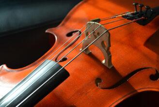närbild på en cellos strängar.