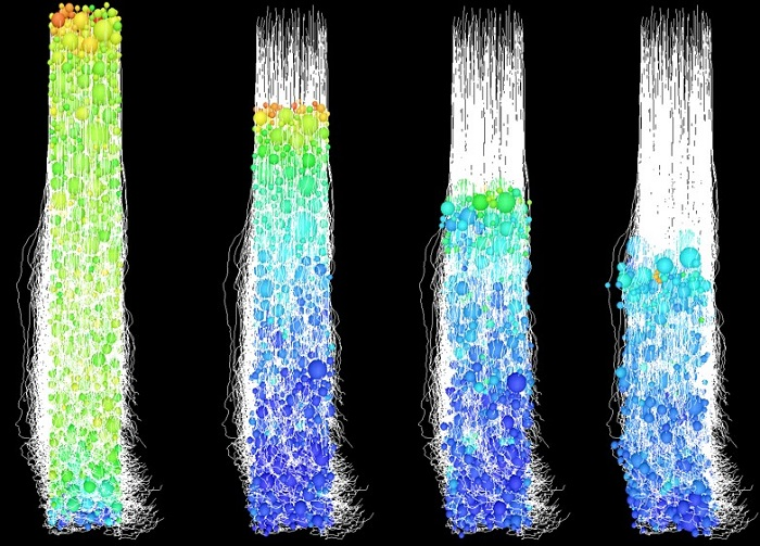 Particle dynamics simulation of coating consolidation