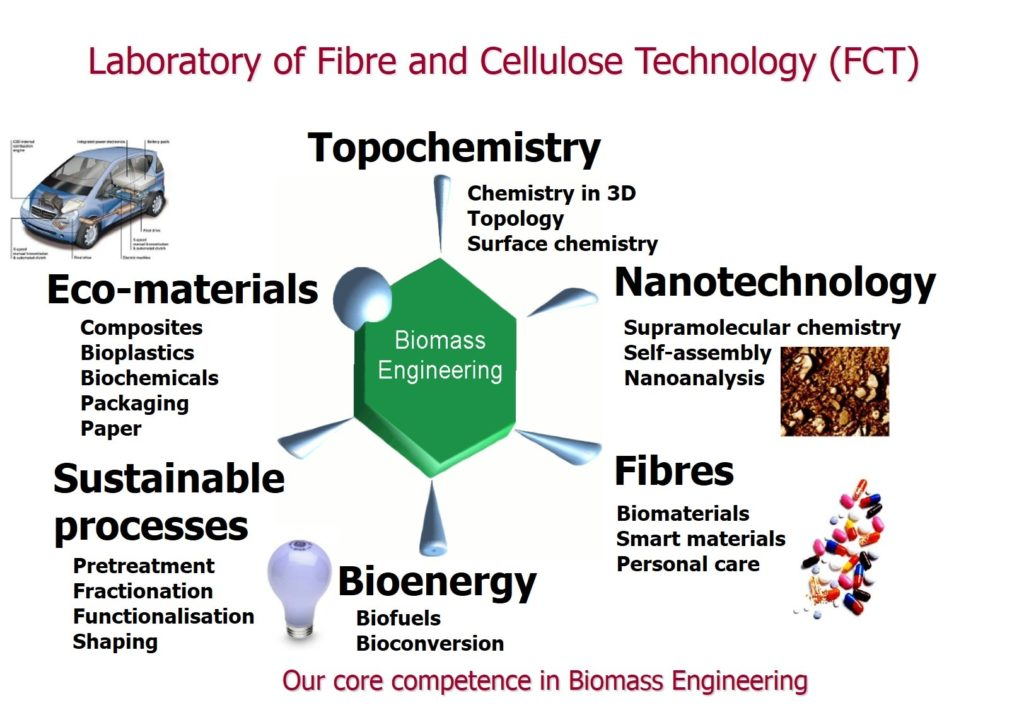 The six points of biomass engineering: Topochemistry, Nanotechnology, Fibres, Bioenergy, Sustainable processes, Eco-materials