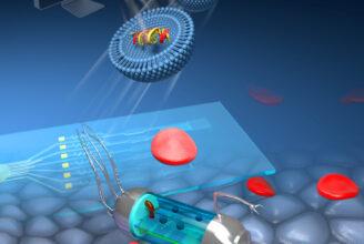 Illustration föreställande målsökande nanoläkemedel i blodomloppet.