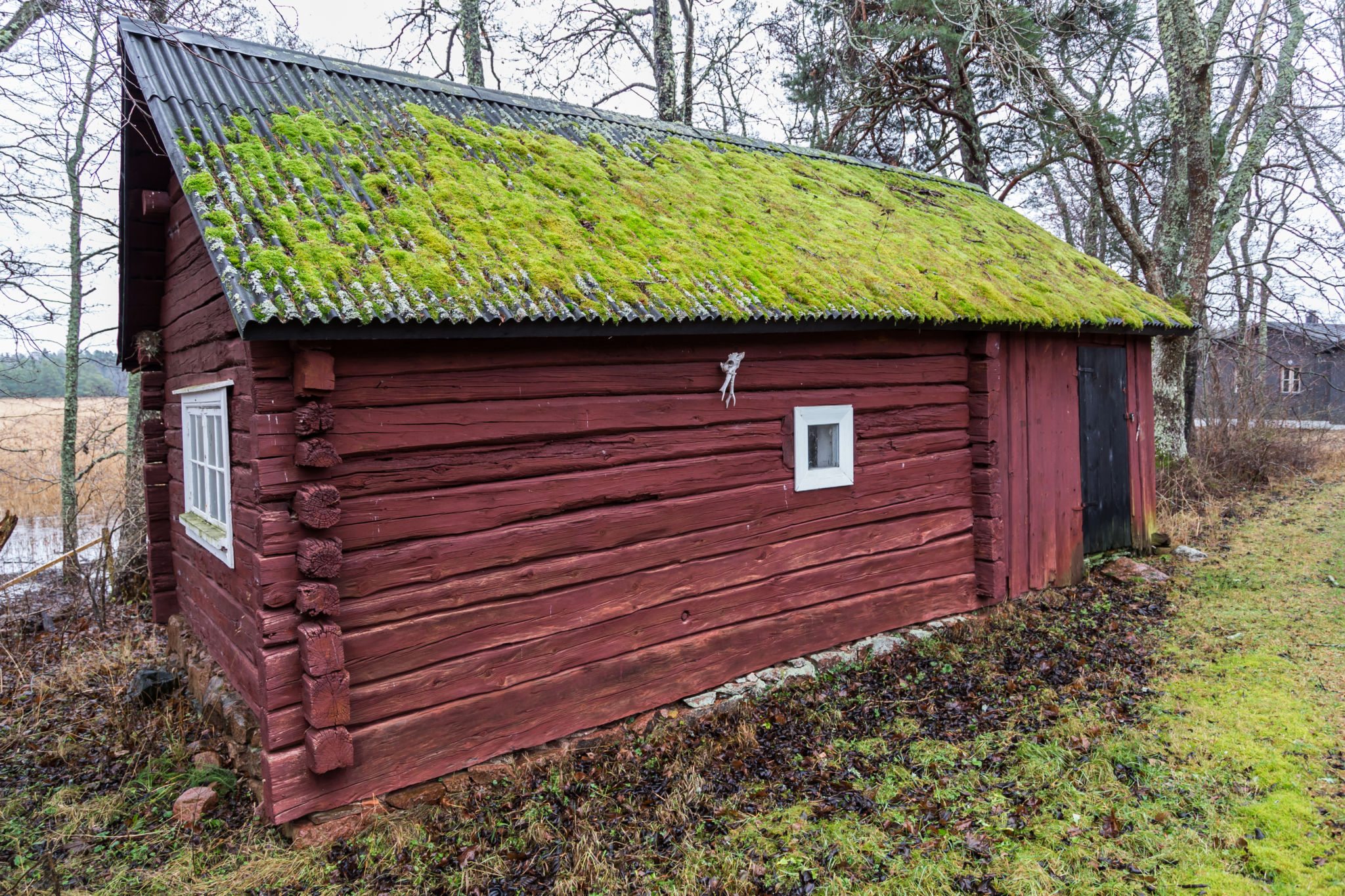 The old sauna at Husö biological station