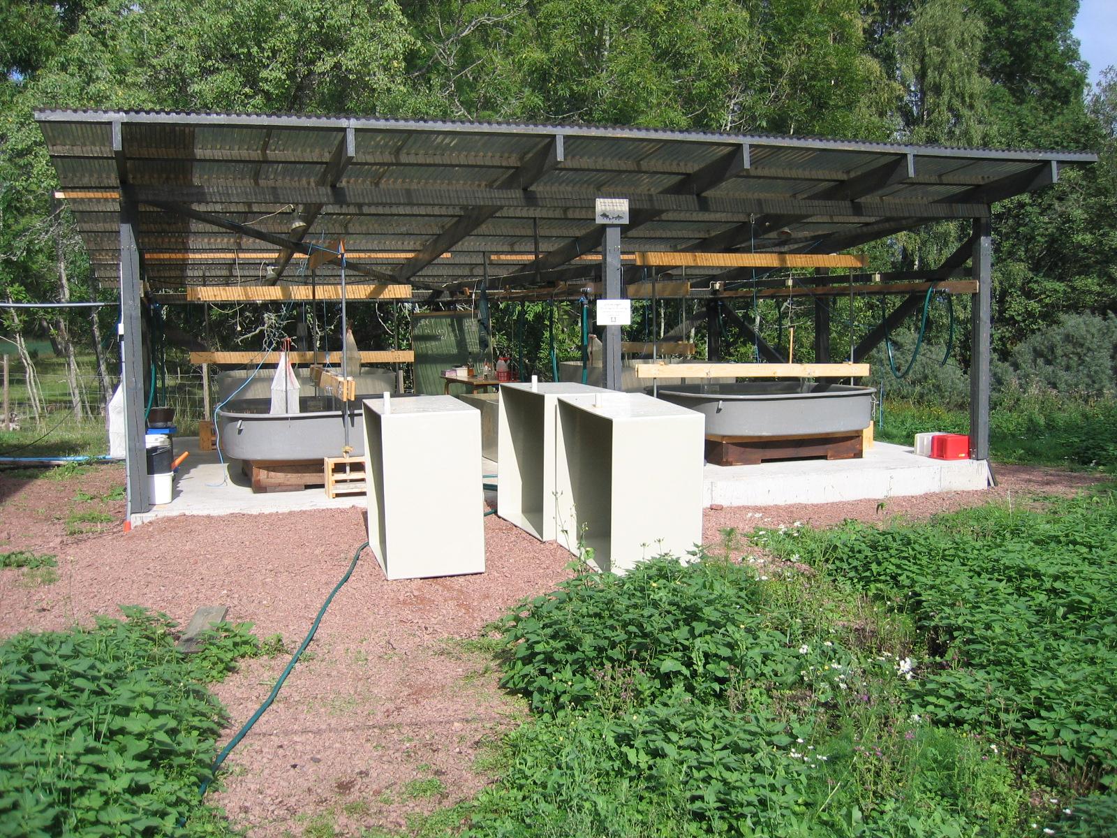 Terass med uteakvarier vid Husö biologiska station