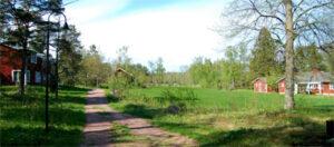 Road to Husö Biological Station