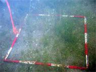 En röd-vit karteringsruta som används för kartering av bottenväxtligheten ligger på sjöbotten