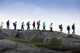 Vandrare på led på ett berg