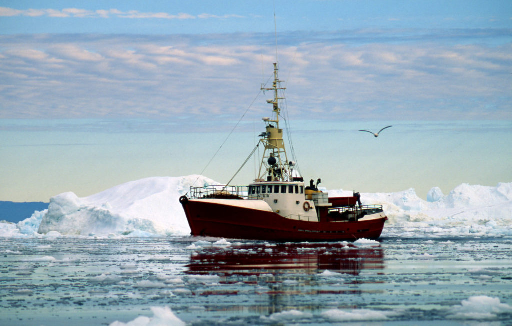 Fishing boat in between icebergs