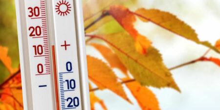 termometer höstlöv