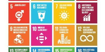 Agenda målen 2030