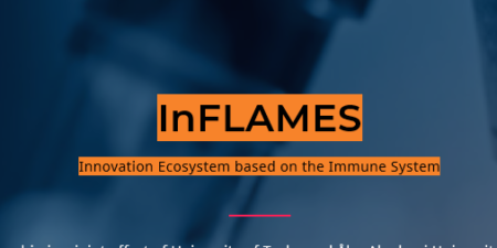 InFlames - Innovation Ecosystem based on the immune system.