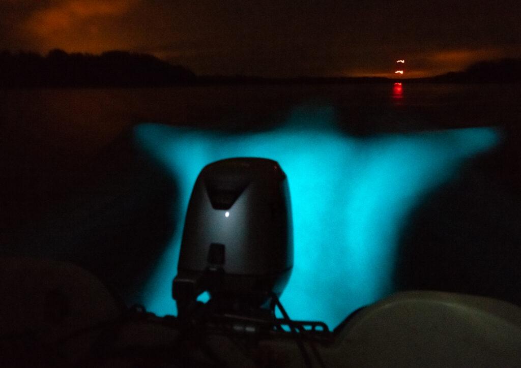 Vattnet bakom en utombordsmoror lyser i turkos färg. Bilden tagen i mörker.