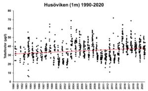 Graf som visar totalfosforhalter i Husövikens ytvatten åren 1990-2020.
