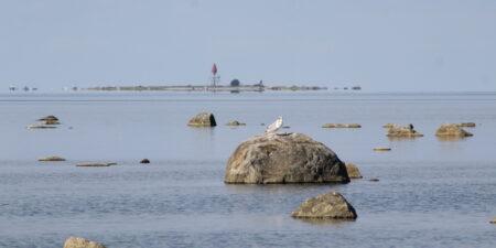 En österbottnisk havsvy med ett sjömärke i bakgrunden.
