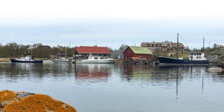 Vy från havet över hamnen på Kyrkogårdsö. Några båthus och båtar.