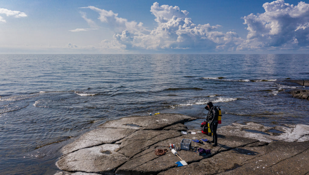 Forskare iklädd dykardräkt vid havsstrand.
