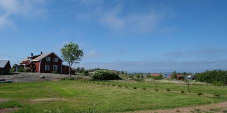 Sommarvy från en skärgårdsö. Rött hus, gröna ängar och öppet hav.