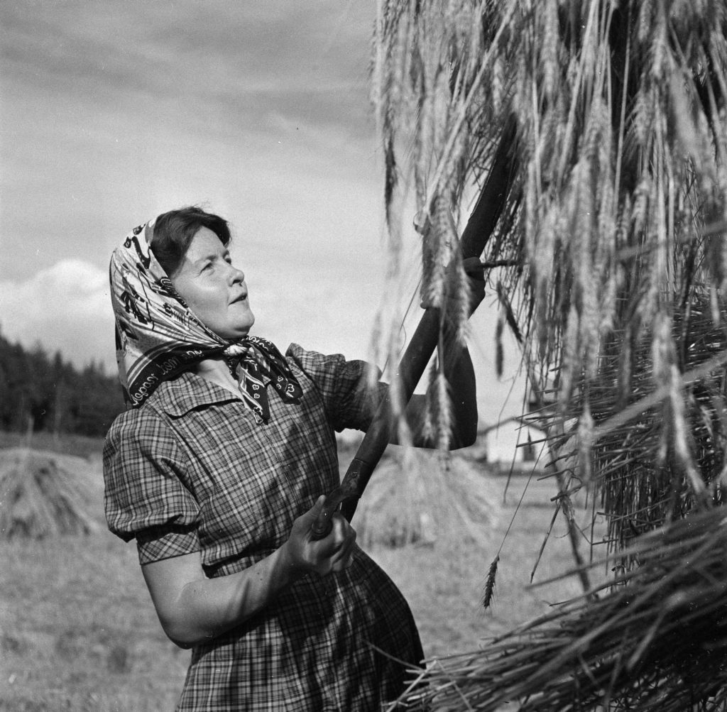 En svart-vit bild på en kvinna med en högaffel vid en höstör.